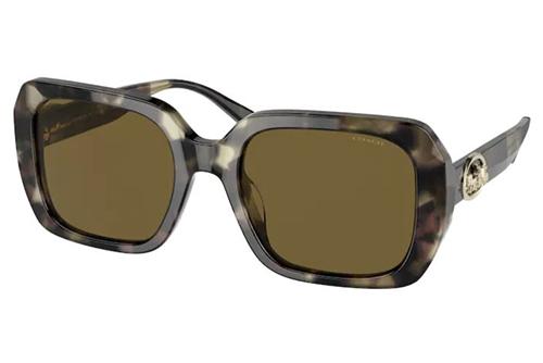 COACH 8329U 559273 53 Women's Sunglasses