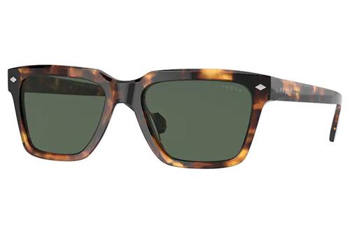Vogue 5404S 281971 54 Men's Sunglasses